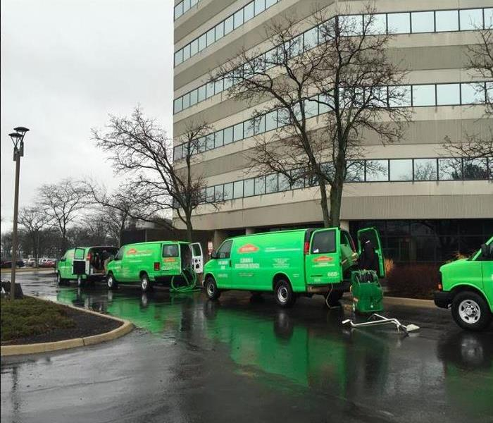 green vans lined up on side of building